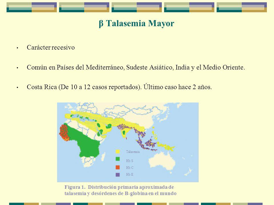 β Talasemia Mayor Carácter recesivo Común en Países del Mediterráneo, Sudeste Asiático, India y el Medio Oriente.