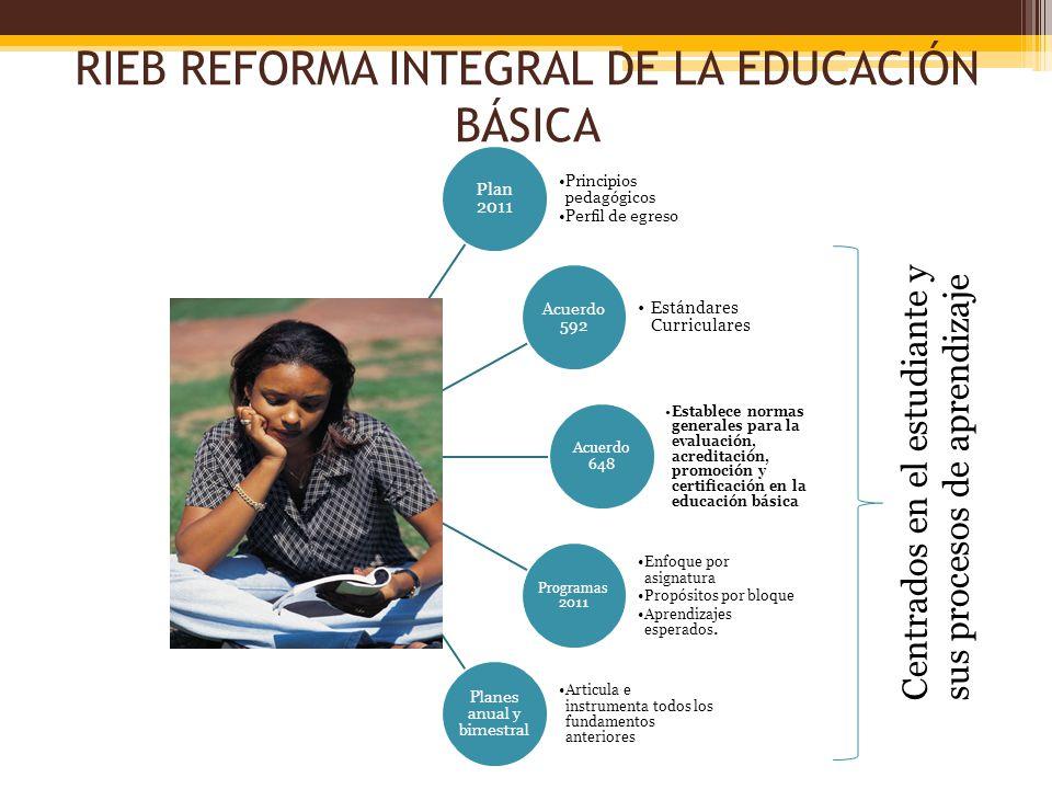 RIEB REFORMA INTEGRAL DE LA EDUCACIÓN BÁSICA Plan 2011 Principios pedagógicos Perfil de egreso Acuerdo 592 Estándares Curriculares Acuerdo 648 Estable