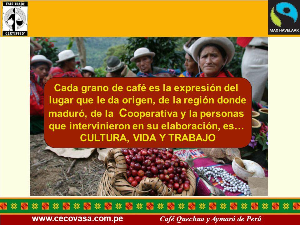 www.cecovasa.com.pe Café Quechua y Aymará de Perú Cada grano de café es la expresión del lugar que le da origen, de la región donde maduró, de la C oo