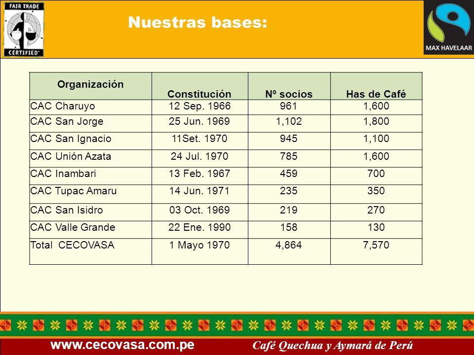 www.cecovasa.com.pe Café Quechua y Aymará de Perú Nuestras bases: Organización ConstituciónNº sociosHas de Café CAC Charuyo12 Sep. 19669611,600 CAC Sa
