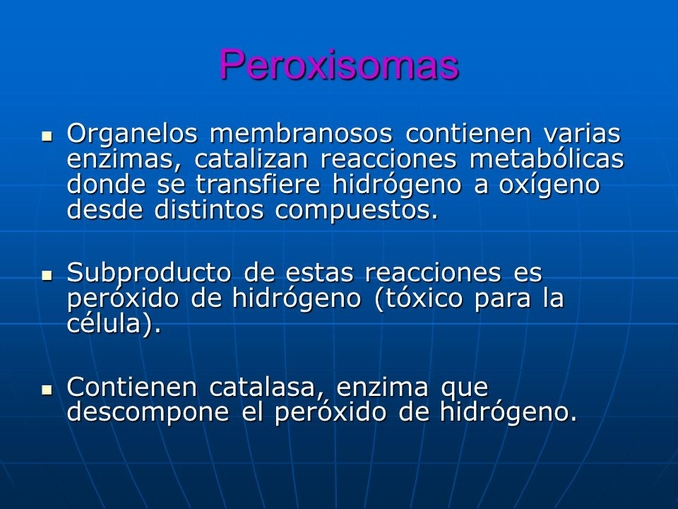 Peroxisomas Organelos membranosos contienen varias enzimas, catalizan reacciones metabólicas donde se transfiere hidrógeno a oxígeno desde distintos c