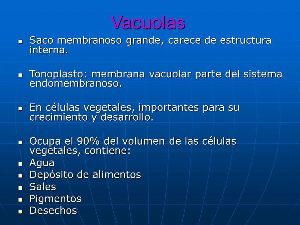 Vacuolas Saco membranoso grande, carece de estructura interna. Saco membranoso grande, carece de estructura interna. Tonoplasto: membrana vacuolar par