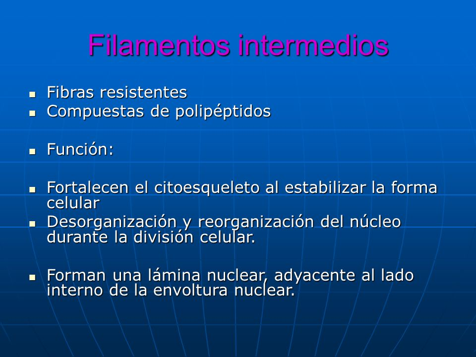 Filamentos intermedios Fibras resistentes Fibras resistentes Compuestas de polipéptidos Compuestas de polipéptidos Función: Función: Fortalecen el cit