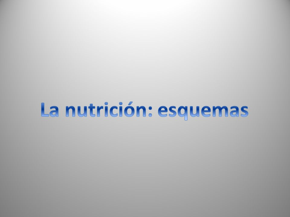 Procesos Obtención de nutrientes Se realiza en elAparato digestivo Obtención de oxígeno Reparto de nutrientes y oxígeno y recogida de desechos Ap.