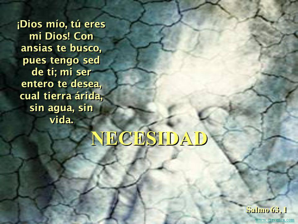 Como ciervo sediento en busca de un río, así, Dios mío, te busco a ti. Salmo 42, 1 PEREGRINAR www.crevenca.com