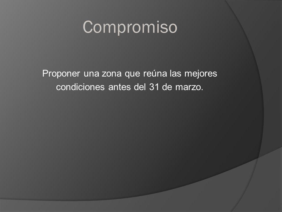 Compromiso Proponer una zona que reúna las mejores condiciones antes del 31 de marzo.