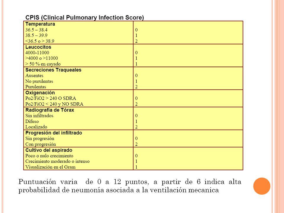 Puntuación varia de 0 a 12 puntos, a partir de 6 indica alta probabilidad de neumonía asociada a la ventilación mecanica