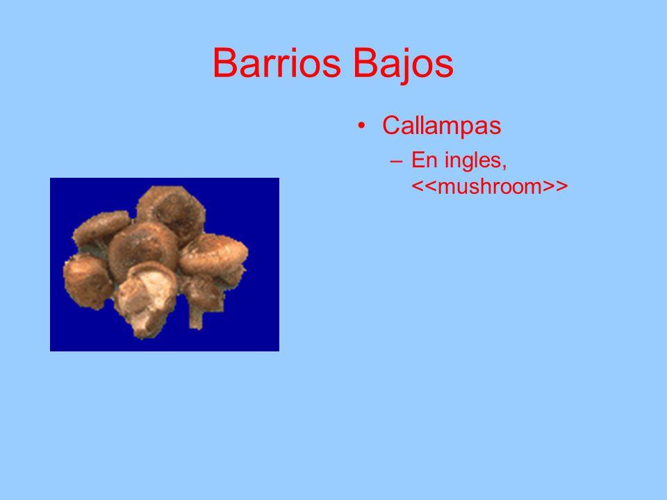 Barrios Bajos Callampas –E–En ingles, <<mushroom>>