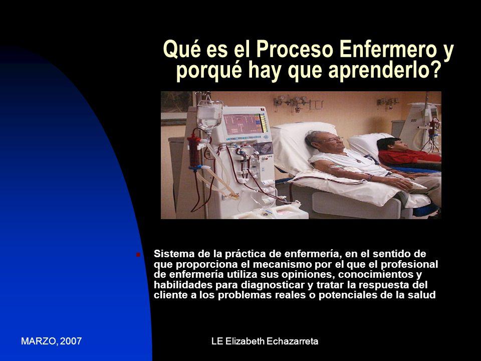 MARZO, 2007LE Elizabeth Echazarreta Organización Se organiza en cinco fases 1.