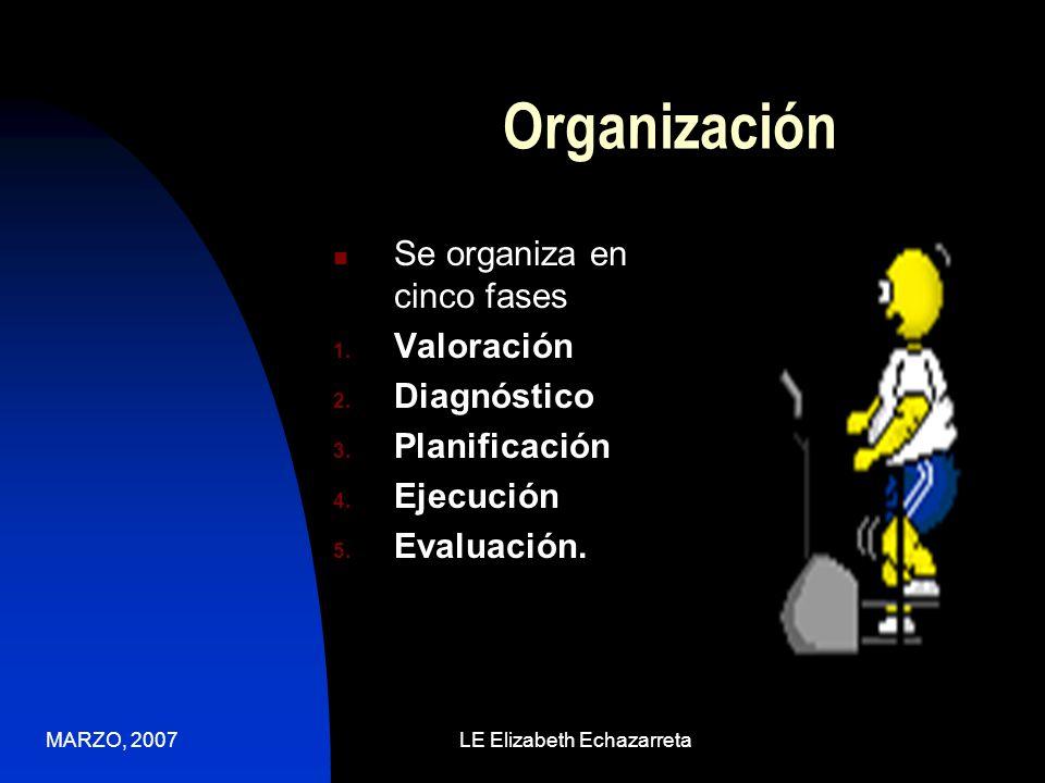 MARZO, 2007LE Elizabeth Echazarreta El proceso de enfermería tiene seis propiedades: Intencionado Sistemático Dinámico Interactivo Flexible Base Teórica