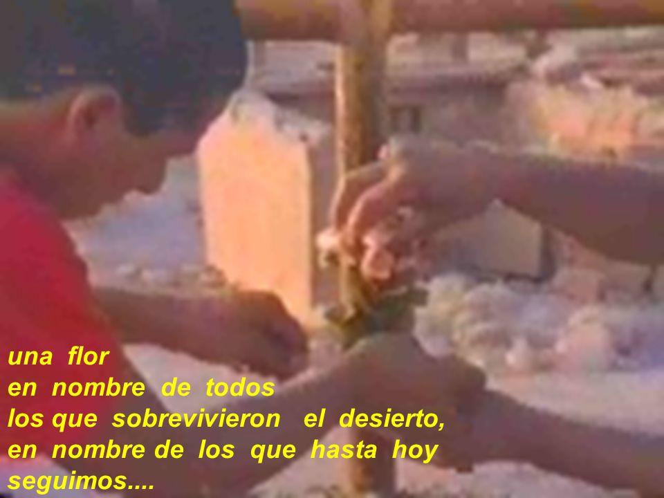 una flor en nombre de todos los que sobrevivieron el desierto, en nombre de los que hasta hoy seguimos....