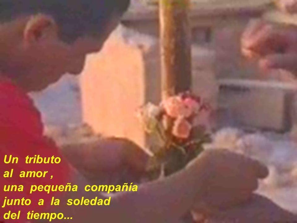 Un tributo al amor, una pequeña compañía junto a la soledad del tiempo...