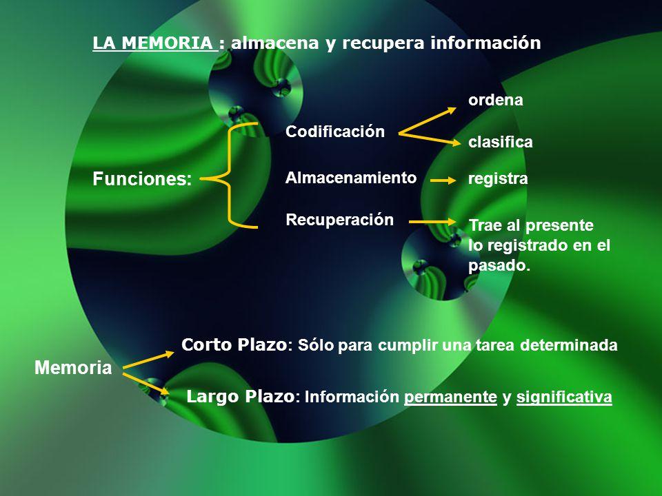 LA MEMORIA : almacena y recupera información Funciones: Codificación Almacenamiento Recuperación ordena clasifica registra Trae al presente lo registr