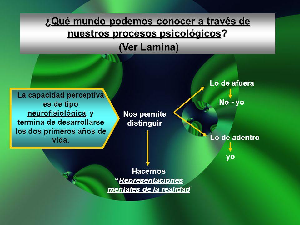 ¿Qué mundo podemos conocer a través de nuestros procesos psicológicos? (Ver Lamina) La capacidad perceptiva es de tipo neurofisiológica, y termina de