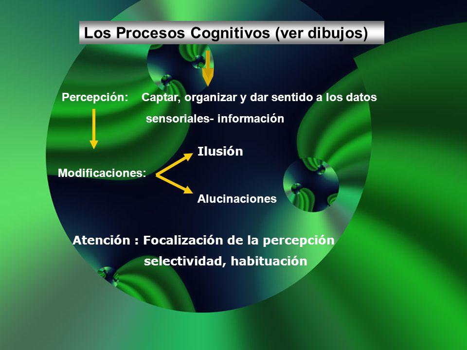 Los Procesos Cognitivos (ver dibujos) Percepción: Captar, organizar y dar sentido a los datos sensoriales- información Modificaciones: Ilusión Alucina