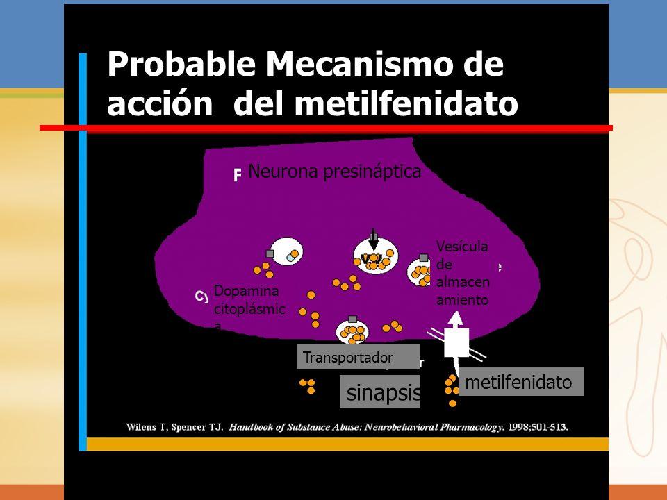 Probable Mecanismo de acción del metilfenidato Neurona presináptica Dopamina citoplásmic a Vesícula de almacen amiento Transportador DA sinapsis metil