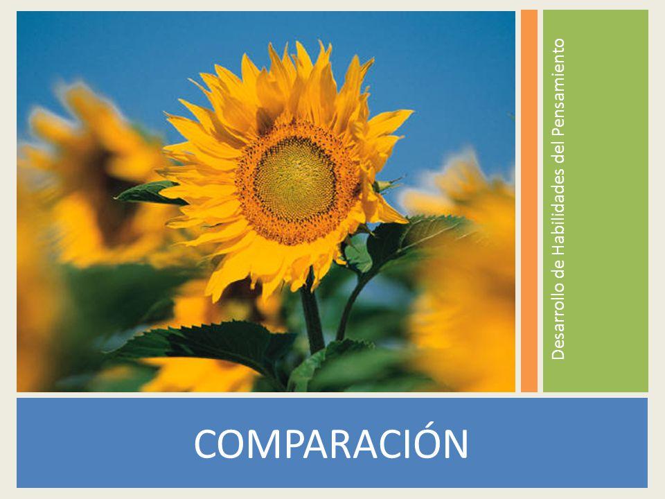 COMPARACIÓN Desarrollo de Habilidades del Pensamiento