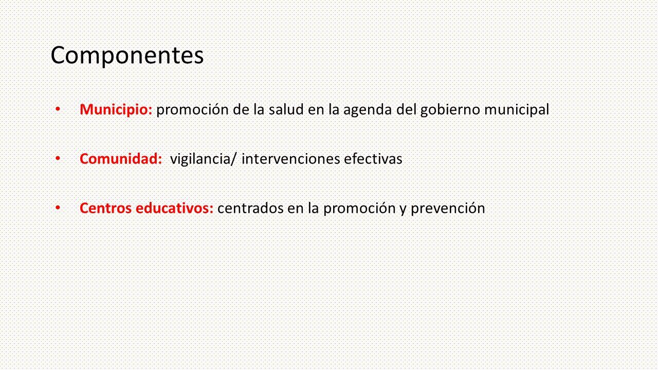 Componentes Municipio: promoción de la salud en la agenda del gobierno municipal Comunidad: vigilancia/ intervenciones efectivas Centros educativos: c