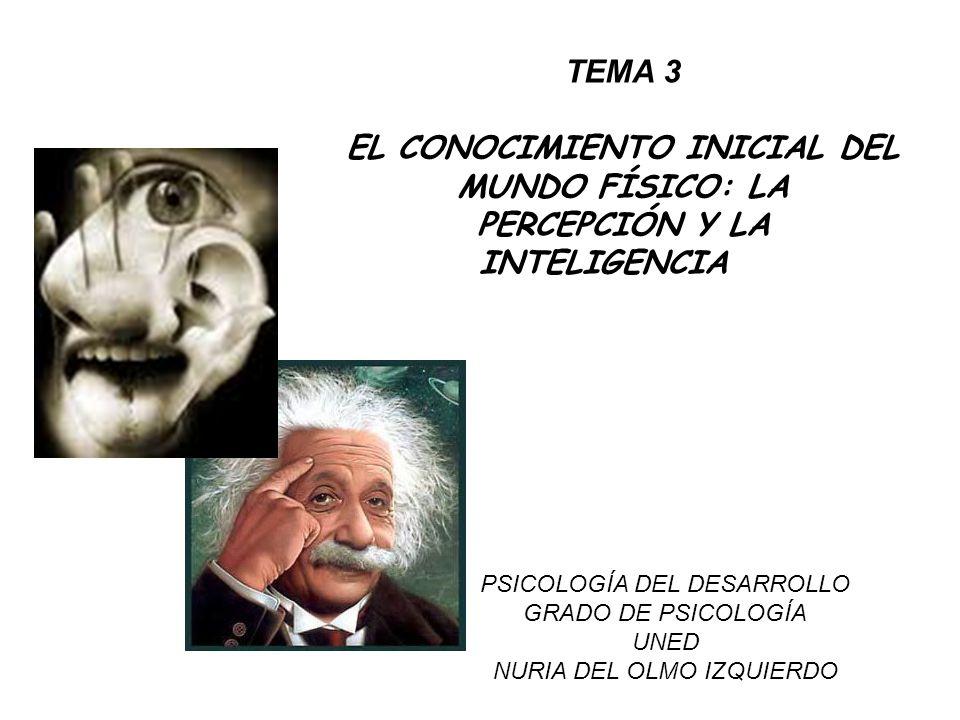 TEMA 3 EL CONOCIMIENTO INICIAL DEL MUNDO FÍSICO: LA PERCEPCIÓN Y LA INTELIGENCIA PSICOLOGÍA DEL DESARROLLO GRADO DE PSICOLOGÍA UNED NURIA DEL OLMO IZQ