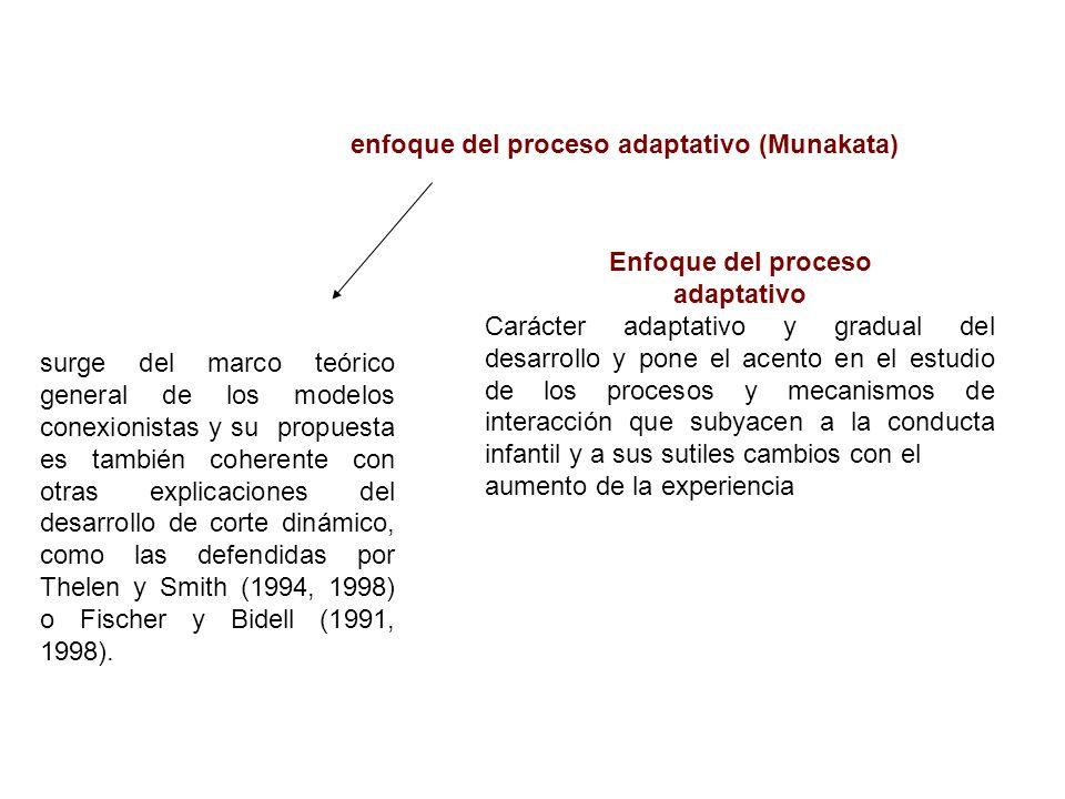 enfoque del proceso adaptativo (Munakata) Enfoque del proceso adaptativo Carácter adaptativo y gradual del desarrollo y pone el acento en el estudio d