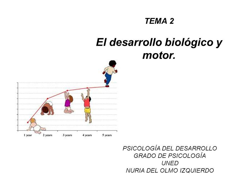TEMA 2 El desarrollo biológico y motor. PSICOLOGÍA DEL DESARROLLO GRADO DE PSICOLOGÍA UNED NURIA DEL OLMO IZQUIERDO