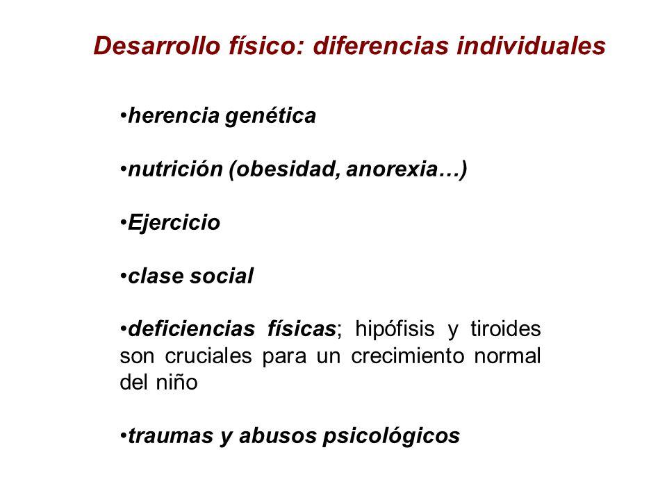 Desarrollo físico: diferencias individuales herencia genética nutrición (obesidad, anorexia…) Ejercicio clase social deficiencias físicas; hipófisis y
