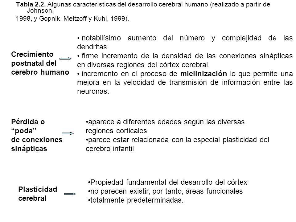 Tabla 2.2. Algunas características del desarrollo cerebral humano (realizado a partir de Johnson, 1998, y Gopnik, Meltzoff y Kuhl, 1999). Crecimiento