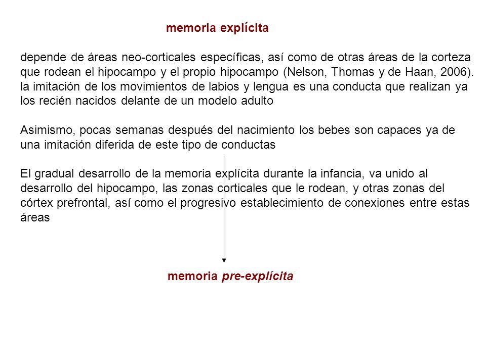 memoria explícita depende de áreas neo-corticales específicas, así como de otras áreas de la corteza que rodean el hipocampo y el propio hipocampo (Ne