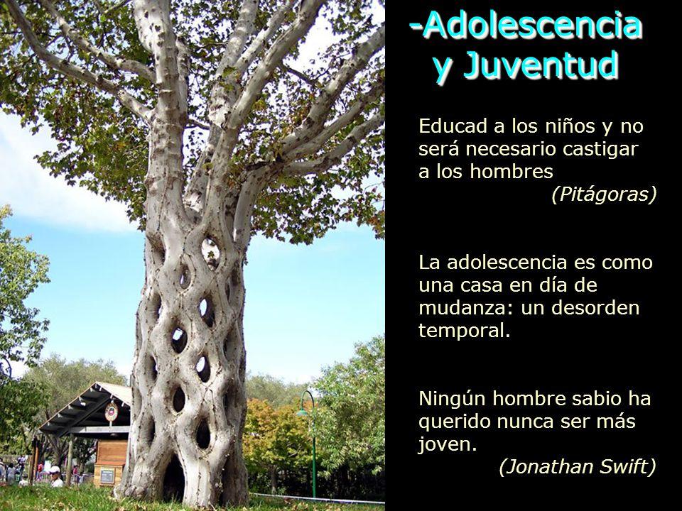 -Adolescencia y Juventud y Juventud-Adolescencia Educad a los niños y no será necesario castigar a los hombres (Pitágoras) La adolescencia es como una casa en día de mudanza: un desorden temporal.