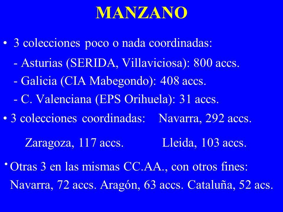 MANZANO 3 colecciones poco o nada coordinadas: - Asturias (SERIDA, Villaviciosa): 800 accs. - Galicia (CIA Mabegondo): 408 accs. - C. Valenciana (EPS