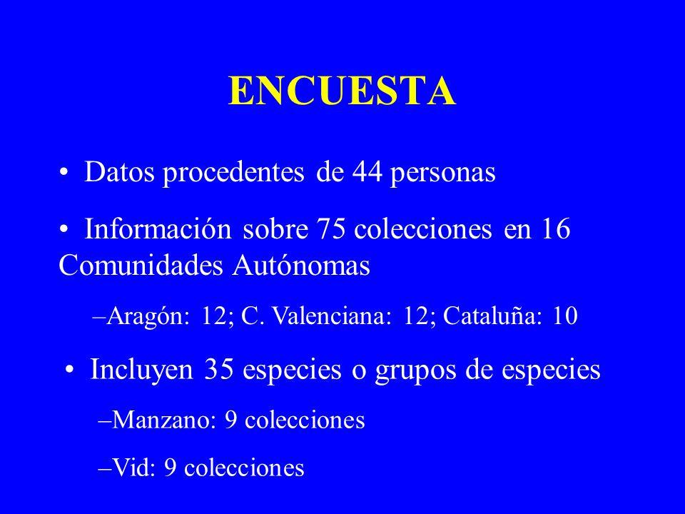 NÚMERO DE ACCESIONES Media de 250 accesiones por colección Colección más grande: Vid en El Encín, Alcalá de Henares (2.765 accesiones) Colección más pequeña: Chumbera en Orihuela, Alicante (5 accesiones) Media de 70 % de material autóctono