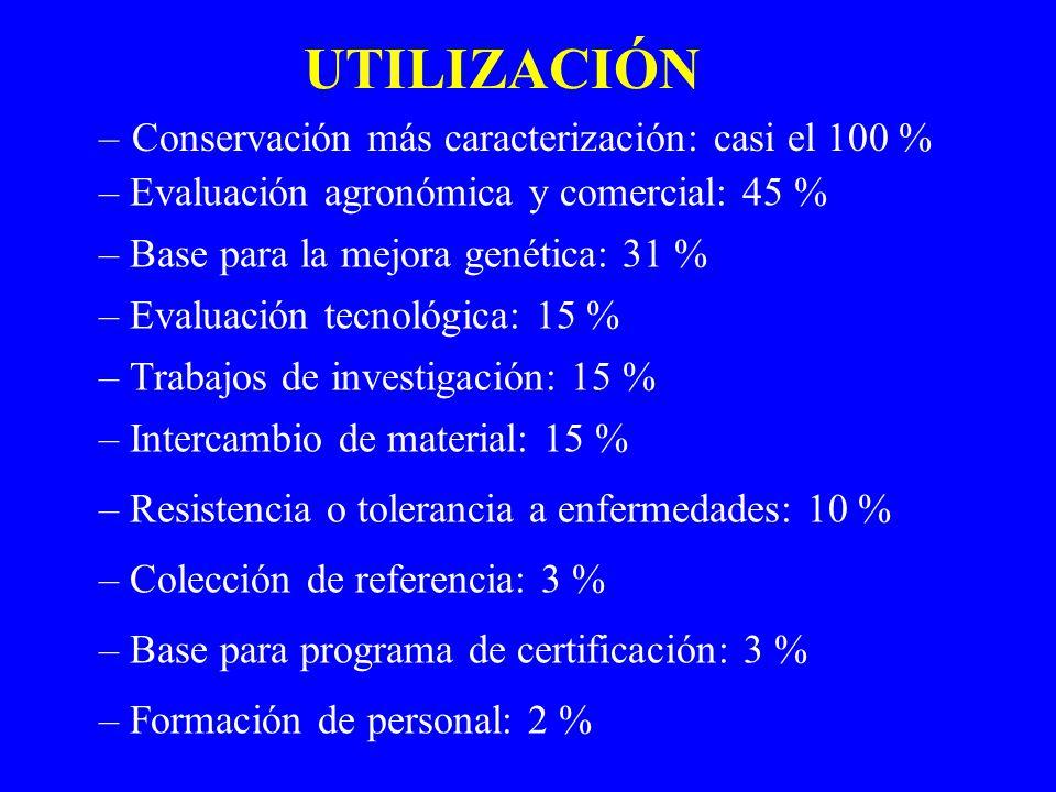 UTILIZACIÓN –Conservación más caracterización: casi el 100 % – Evaluación agronómica y comercial: 45 % – Base para la mejora genética: 31 % – Evaluaci