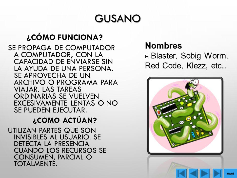 GUSANO ¿CÓMO FUNCIONA.
