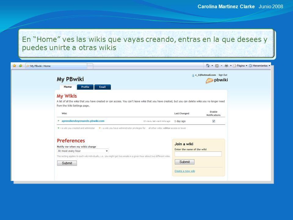 En E-mail, puedes cambiar tu dirección de correo, y tu password Junio 2008Carolina Martinez Clarke