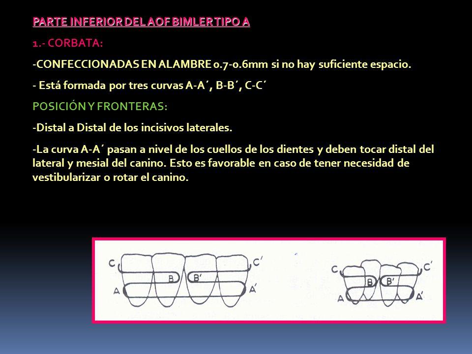 PARTE INFERIOR DEL AOF BIMLER TIPO A 1.- CORBATA: -CONFECCIONADAS EN ALAMBRE 0.7-0.6mm si no hay suficiente espacio. - Está formada por tres curvas A-