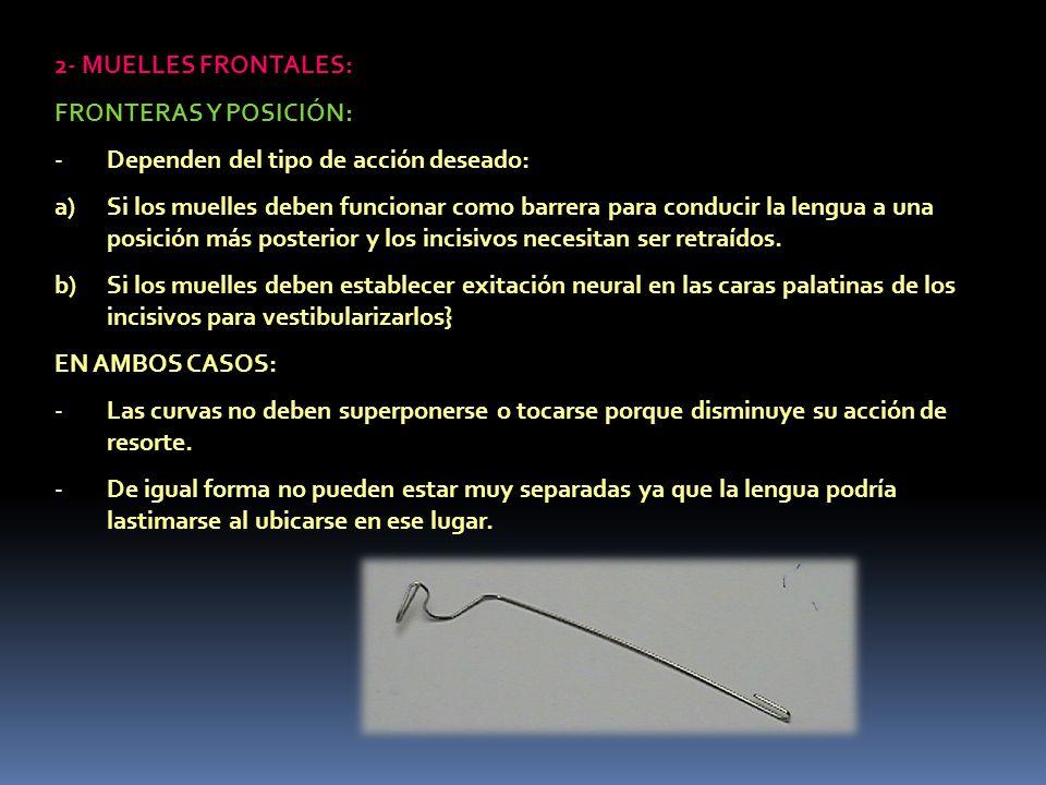 2- MUELLES FRONTALES: FRONTERAS Y POSICIÓN: -Dependen del tipo de acción deseado: a)Si los muelles deben funcionar como barrera para conducir la lengu