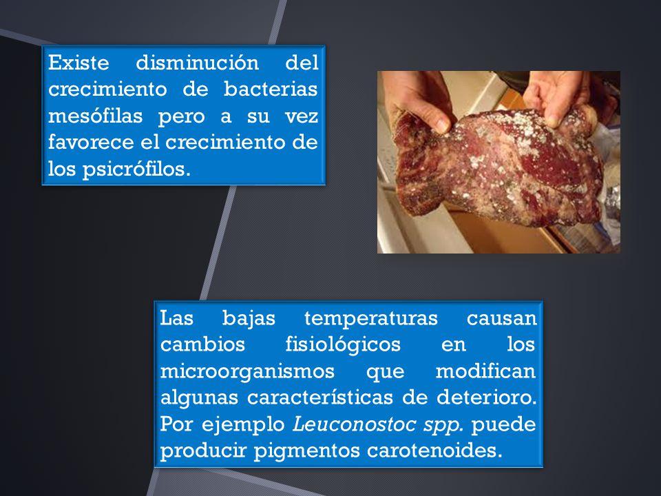 Los tiempos de generación de las bacterias de modifican con la temperatura por ejemplo algunas pseudomonas tienen un tiempo de generación de 6.7 horas a 5°C pero un tiempo do 26.6 horas a 0°C.