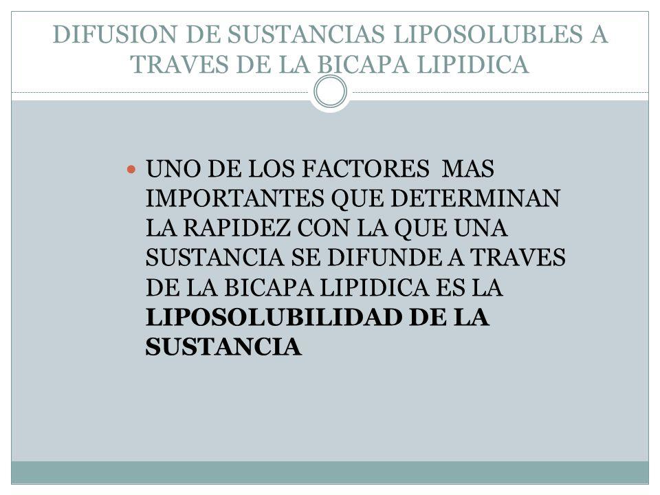 DIFUSION DE SUSTANCIAS LIPOSOLUBLES A TRAVES DE LA BICAPA LIPIDICA UNO DE LOS FACTORES MAS IMPORTANTES QUE DETERMINAN LA RAPIDEZ CON LA QUE UNA SUSTAN