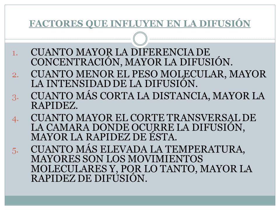 FACTORES QUE INFLUYEN EN LA DIFUSIÓN 1. CUANTO MAYOR LA DIFERENCIA DE CONCENTRACIÓN, MAYOR LA DIFUSIÓN. 2. CUANTO MENOR EL PESO MOLECULAR, MAYOR LA IN