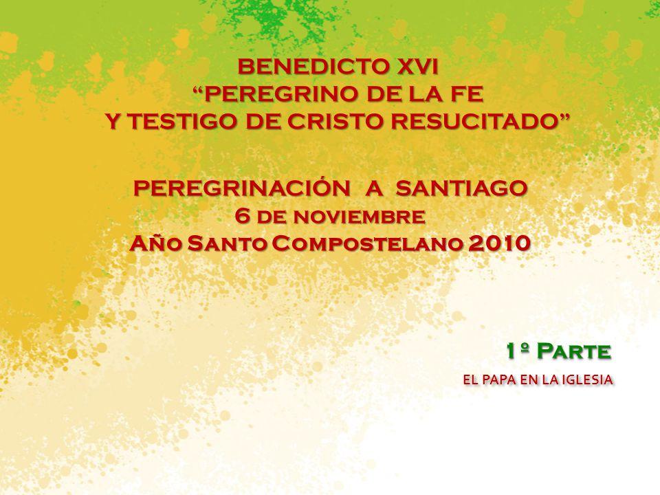 PEREGRINACIÓN A SANTIAGO 6 de noviembre Año Santo Compostelano 2010 BENEDICTO XVI PEREGRINO DE LA FE Y TESTIGO DE CRISTO RESUCITADO