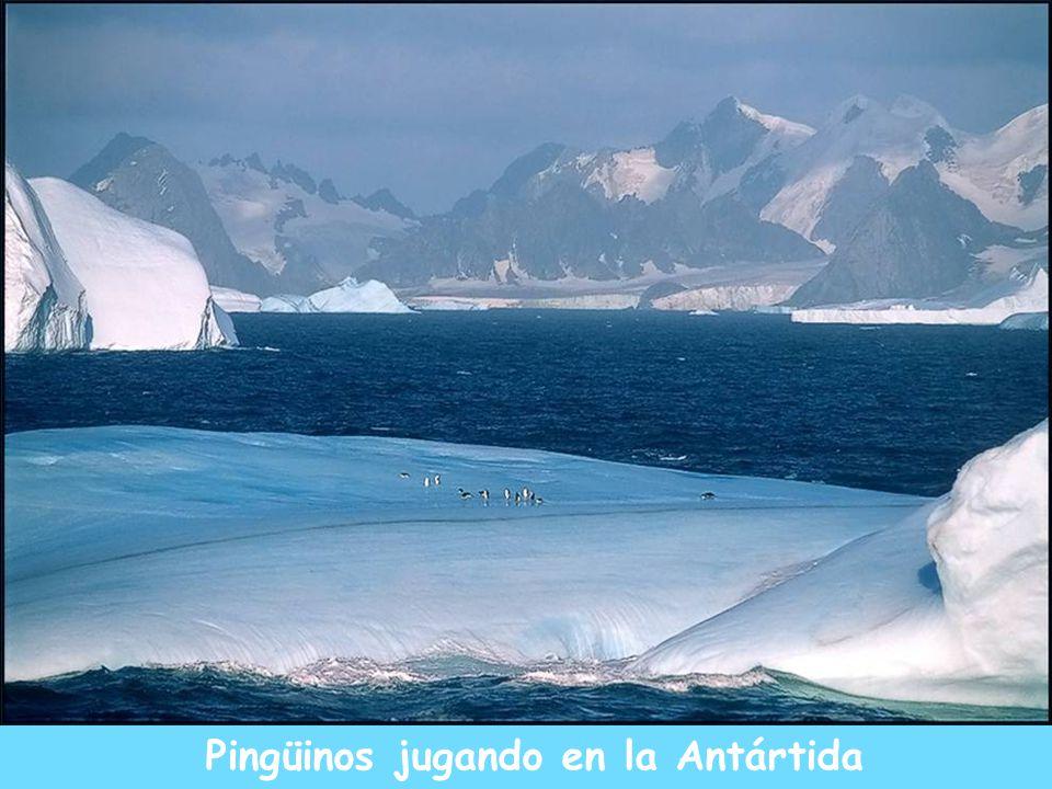 Atardecer en el Polo Norte