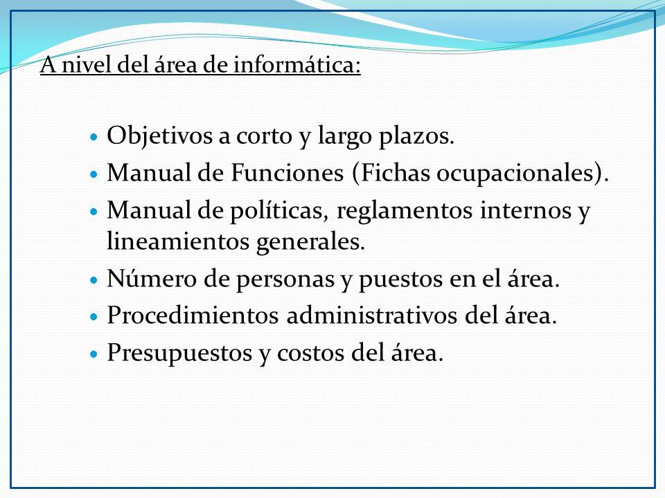 A nivel del área de informática: Objetivos a corto y largo plazos. Manual de Funciones (Fichas ocupacionales). Manual de políticas, reglamentos intern