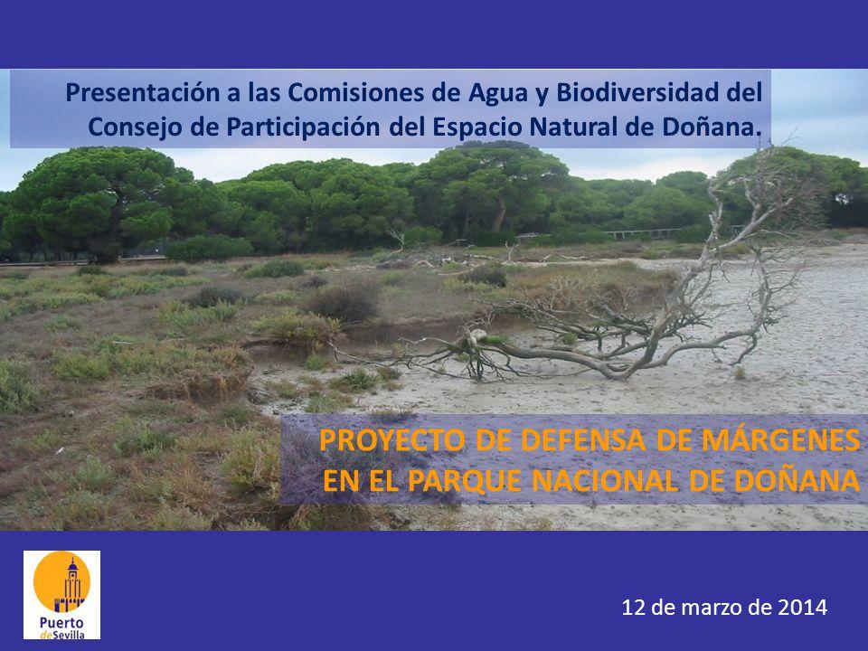 PROYECTO DE DEFENSA DE MÁRGENES EN EL PARQUE NACIONAL DE DOÑANA Presentación a las Comisiones de Agua y Biodiversidad del Consejo de Participación del Espacio Natural de Doñana.