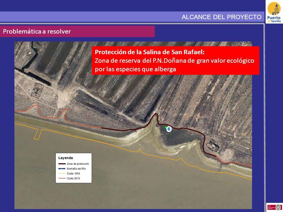 ALCANCE DEL PROYECTO Problemática a resolver Protección de la Salina de San Rafael: Zona de reserva del P.N.Doñana de gran valor ecológico por las esp