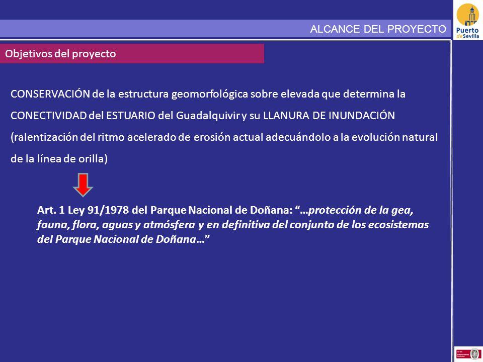 CONSERVACIÓN de la estructura geomorfológica sobre elevada que determina la CONECTIVIDAD del ESTUARIO del Guadalquivir y su LLANURA DE INUNDACIÓN (ral