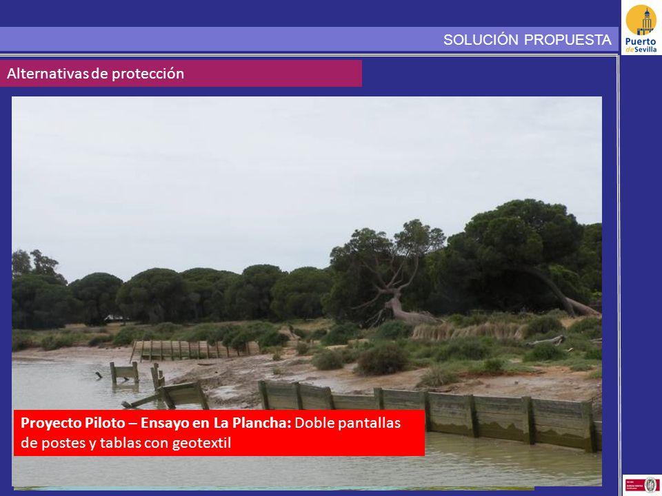 SOLUCIÓN PROPUESTA Alternativas de protección Proyecto Piloto – Ensayo en La Plancha: Doble pantallas de postes y tablas con geotextil