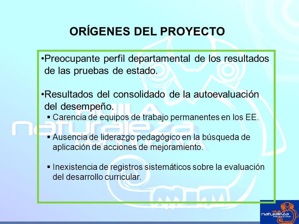 ORÍGENES DEL PROYECTO Preocupante perfil departamental de los resultados de las pruebas de estado. Resultados del consolidado de la autoevaluación del