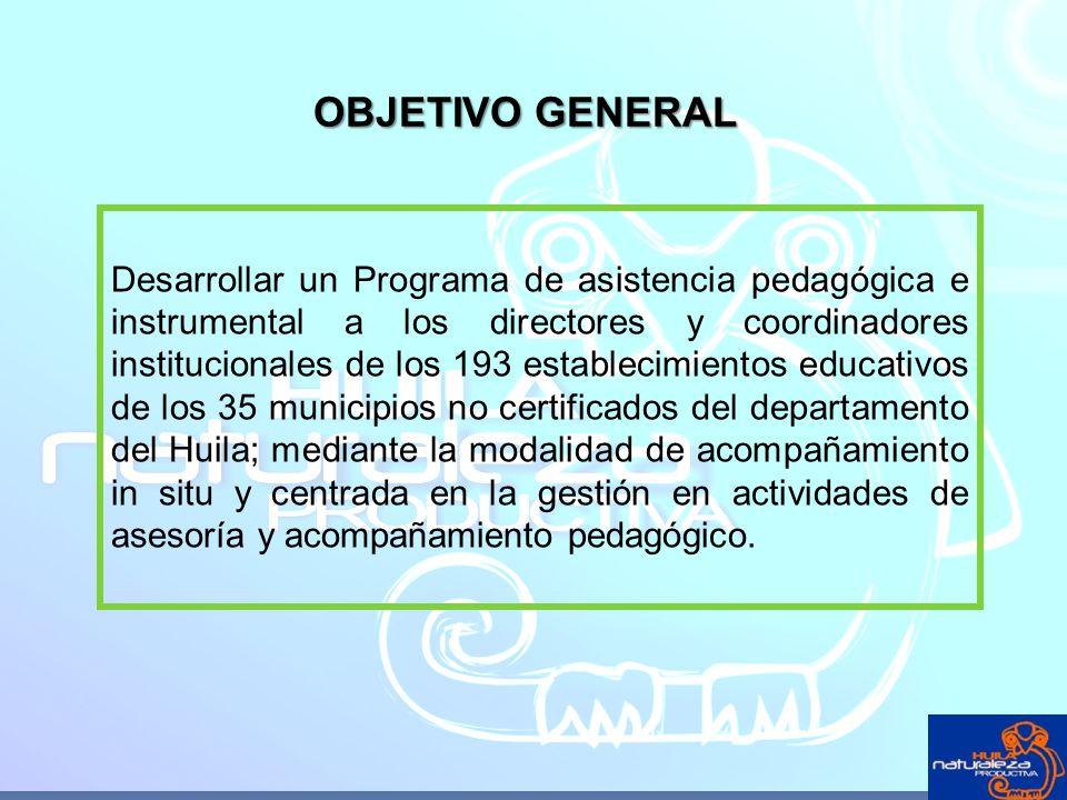 OBJETIVO GENERAL Desarrollar un Programa de asistencia pedagógica e instrumental a los directores y coordinadores institucionales de los 193 estableci