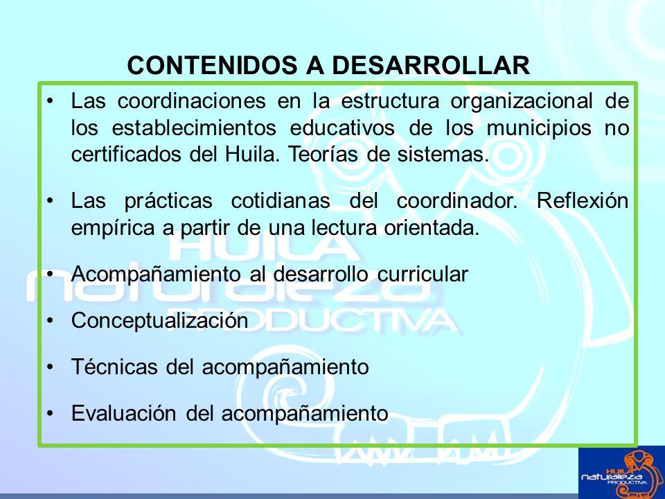 Las coordinaciones en la estructura organizacional de los establecimientos educativos de los municipios no certificados del Huila. Teorías de sistemas