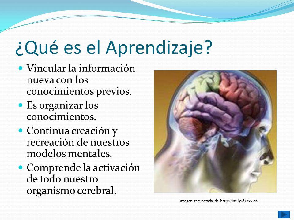 ¿Qué es el Aprendizaje? Vincular la información nueva con los conocimientos previos. Es organizar los conocimientos. Continua creación y recreación de